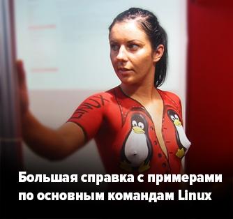Девушка сиськи линук Linux. Cправка по командам Linux